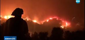 Най-големият пожар в историята на Калифорния е почти овладян (ВИДЕО)