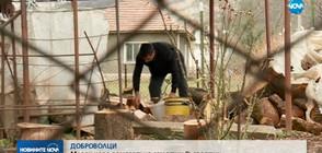 ДОБРОВОЛЦИ: Млади хора помагат на самотни възрастни в Северозападна България