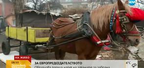 ЗА ЕВРОПРЕДСЕДАТЕЛСТВОТО: Образцова каруца напук на заканите за забрана