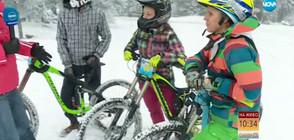 Атракции на Витоша по случай Световния ден на снега (ВИДЕО)