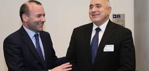 Борисов представи пред ЕНП приоритетите на българското европредседателство (ВИДЕО)