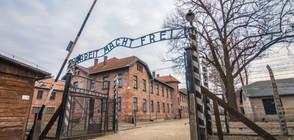 Затвор за активистите, разголили се в Аушвиц (ВИДЕО)