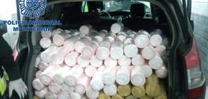 Откриха 754 килограма дрога в пратка ананаси (ВИДЕО+СНИМКИ)