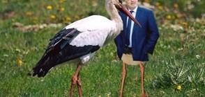 Щъркелите и блатните кокичета на Борисов – на подбив във Facebook (СНИМКИ)