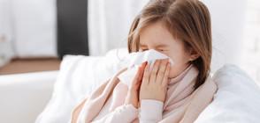 Отменят грипната епидемия в Софийска област, Бургас и Видин
