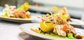Темата на NOVA: Рецепта за chef