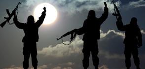 30 000 са потенциалните терористи в Европа