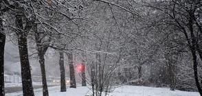 ТОТАЛНА СМЯНА НА ВРЕМЕТО: Къде ще вали сняг?