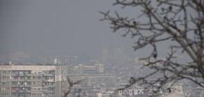 Химикалите в сапуна и боите замърсяват въздуха колкото колите