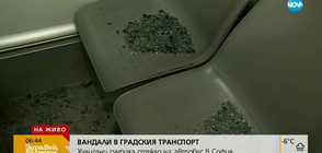 Футболни фенове вилняха в градския транспорт в София (ВИДЕО)