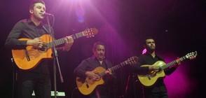 The Gipsy Kings с фламенко фиеста през юни в София