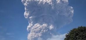 ЧЕРВЕН КОД: Индонезийски вулкан изригна и изхвърли пепел и пара (ВИДЕО)