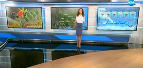 Прогноза за времето (19.02.2018 - централна)