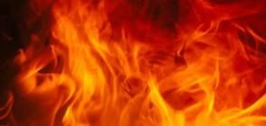 Четири пожарни гасят голям пожар край Пловдив