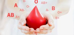 Преливане на кръв от подрастващи подмладява мозъка