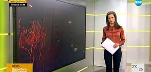 Новините на NOVA (23.02.2018 - 8.00 ч.)