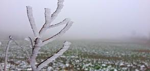 Климатолог: Очакват ни четири ледени дни (ВИДЕО)