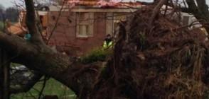 Мощно торнадо в Кентъки взе две жертви (ВИДЕО)