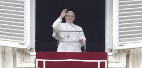 Папа Франциск с настоятелен призив насилието в Сирия незабавно да спре