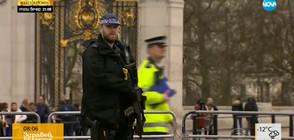 Страх от крайнодесен тероризъм във Великобритания