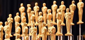 """Въвеждат нова категория в раздаването на """"Оскар""""-ите"""