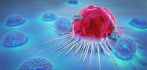 Как да се предпазим от рак?
