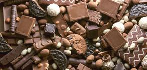 Кой е най-скъпият шоколад в света? (ВИДЕО+СНИМКИ)