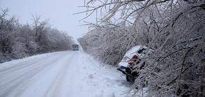 СНЯГ ЗА ПЪРВА ПРОЛЕТ: Хаос по пътищата, катастрофи и места без ток (ОБЗОР)