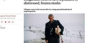 """""""Гардиън"""": Българи спасяват премръзнали щъркели"""
