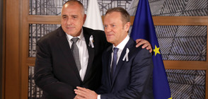 Борисов: Срещата между лидерите на ЕС и Турция е важна за отношенията (ВИДЕО+СНИМКИ)