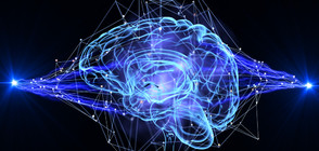 Трудните времена могат да оставят своя отпечатък върху мозъка