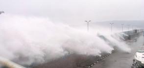 """От """"Моята новина"""": Огромна вълна се стовари върху кола във Варна (ВИДЕО)"""