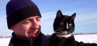 Граф - котката, която изкачва планински върхове (ВИДЕО)