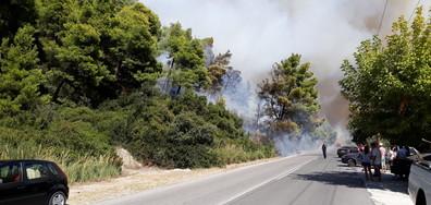 Горски пожар на Халкидики заплашва много къщи (ВИДЕО+СНИМКИ)