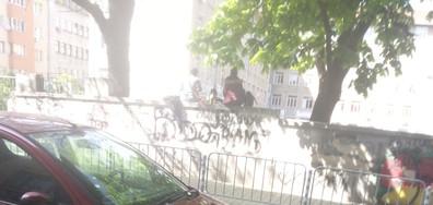 Бири в двора на училището