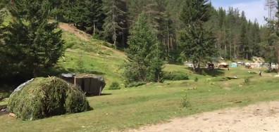 Катун съсипва природата в Родопите