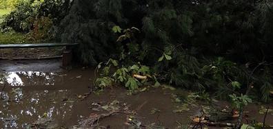 Бурята в град Луковит 3