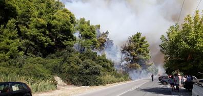 Пожар в Халкидики