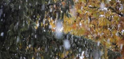Снежно утро от Разград