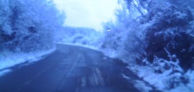 Хубава зимна картина в Пернишко