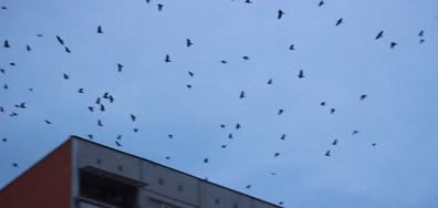 Небето над Пловдив почерня