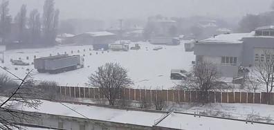 Снежна пролет в Добрич