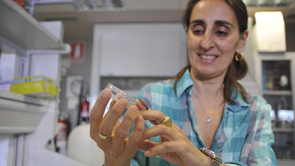 Испански учени показаха червеи, които се хранят с найлонови торбички