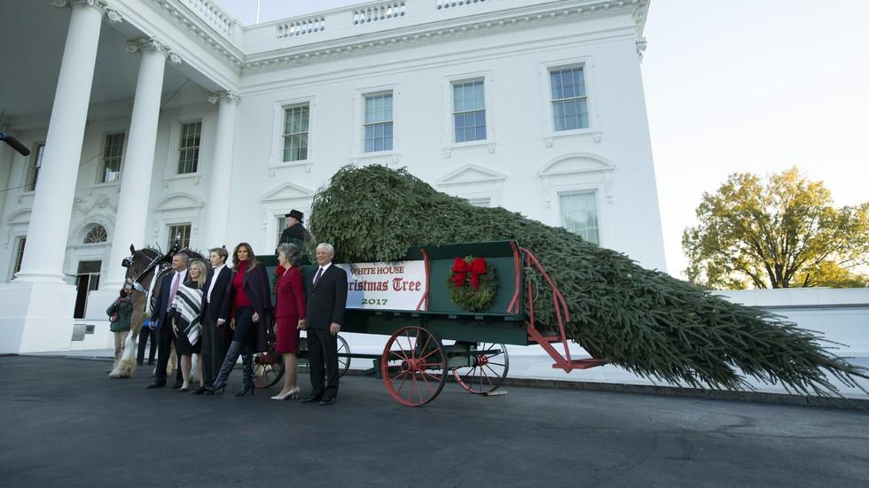 Мелания и синът й приеха коледната елха за Белия дом