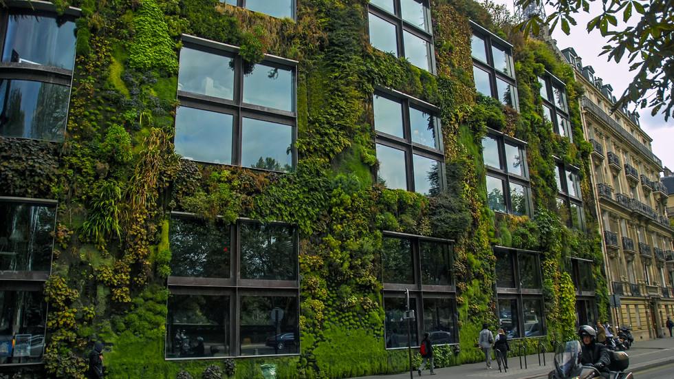 Невероятни вертикални градини от целия свят
