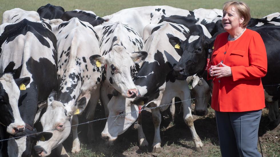 Меркел на посещение в германска ферма