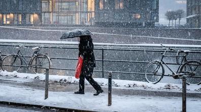 Сняг парализира Западна Европа