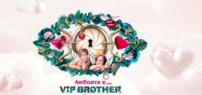 Очаквайте VIP Brother 2017 по NOVA