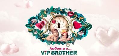 Любовният сезон на VIP Brother започва на 11 септември