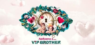 На крилете на любовта във VIP Brother 2017